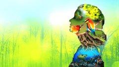 22 мая – Международный день биологического разнообразия